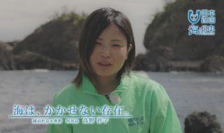 福井県-B02s01