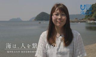 福井県-B09s01