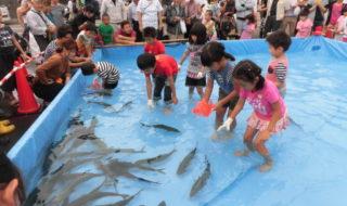 越前魚祭り